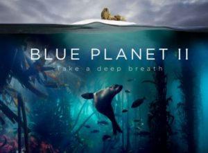 Planeta azul II- 1-El Oceano
